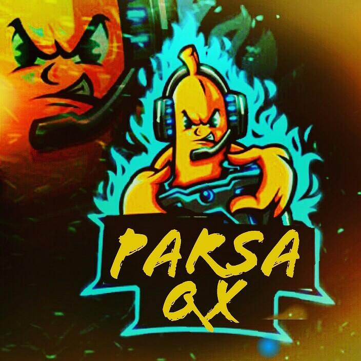 parsaqx profile picture