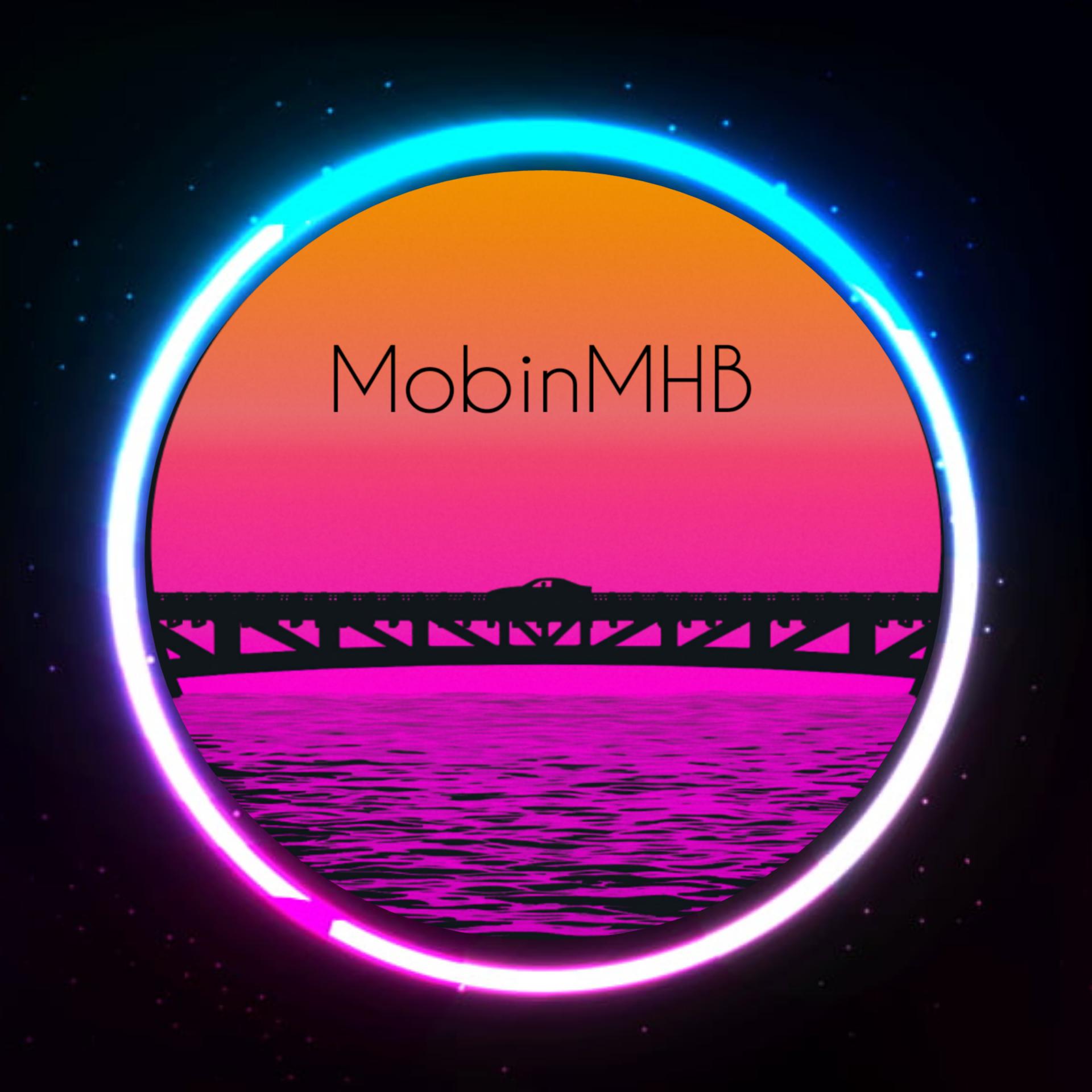 mobinmhb profile picture