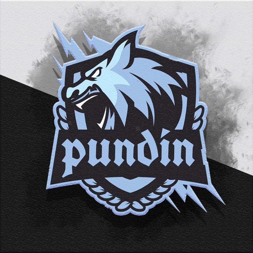 Pundin profile picture