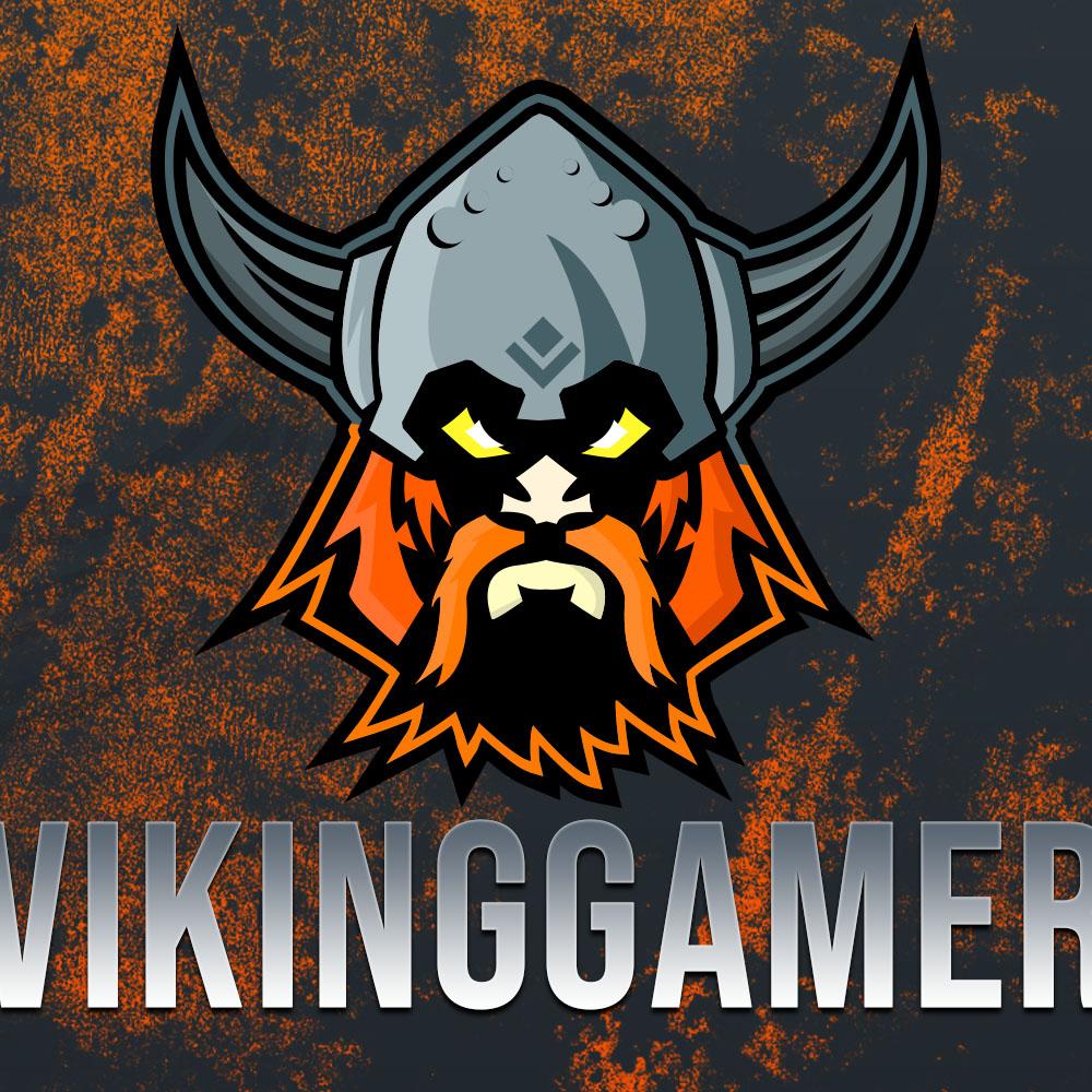 VikingGamer profile picture